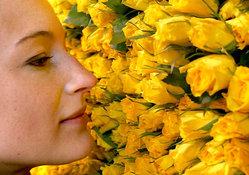 Аллергия: закройте двери и наденьте очки!. 8005.jpeg