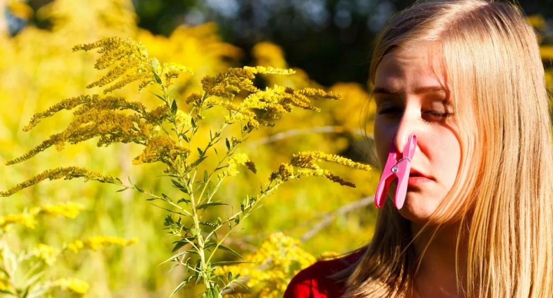 Весна – пора любви и аллергии