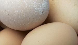Выбираем самые полезные продукты для кормящей мамы. 7176.jpeg