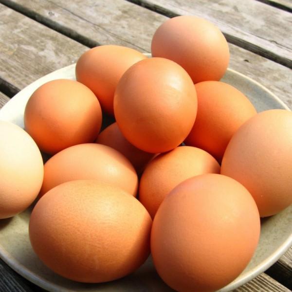 Яйца не влияют на работу сердца - ученые. 11281.jpeg
