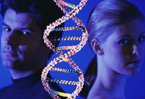 Зачем считать хромосомы? Досадные ошибки природы.... Зачем считать хромосомы? Досадные ошибки природы...