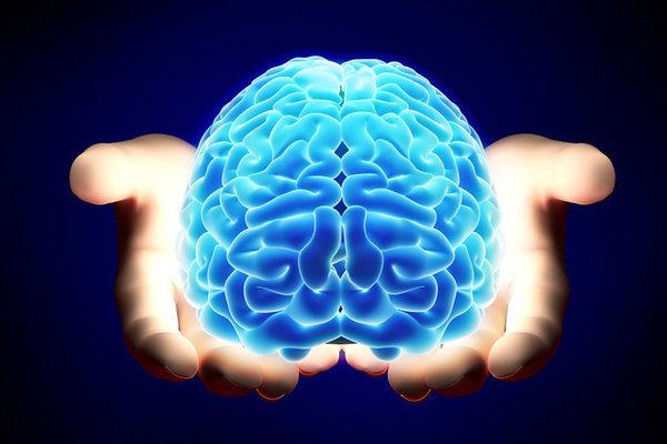 Правда ли, что мозг работает лишь на 10%?. 17330.jpeg
