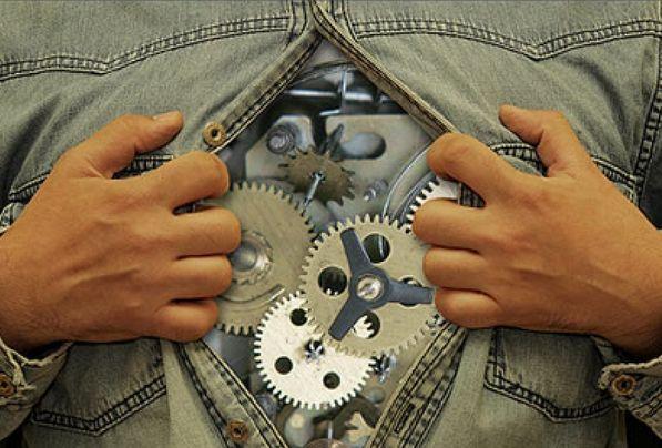 Биологические часы диктуют время. Как определить свое?. биоритмы
