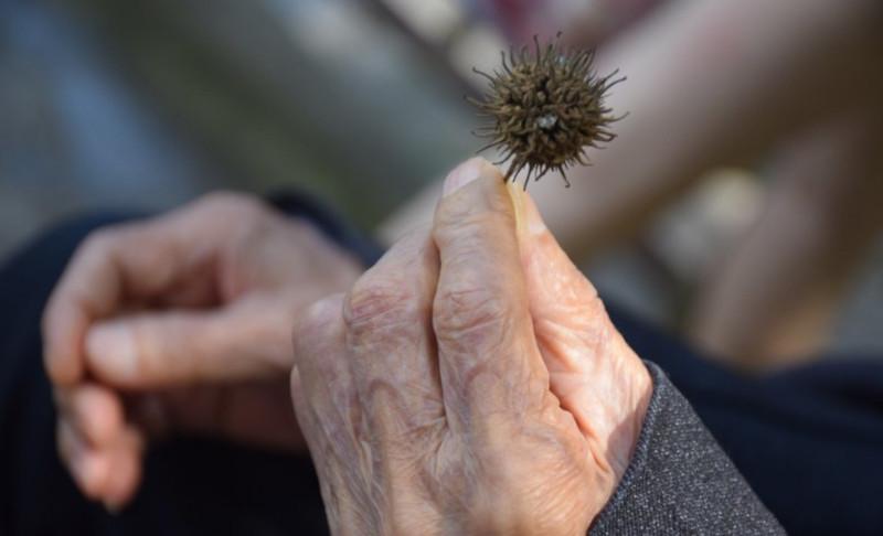 Найдена самая частая причина быстрого старения. медицина, здоровье, старение