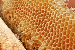 Пчелы – это не только мед. 9417.jpeg