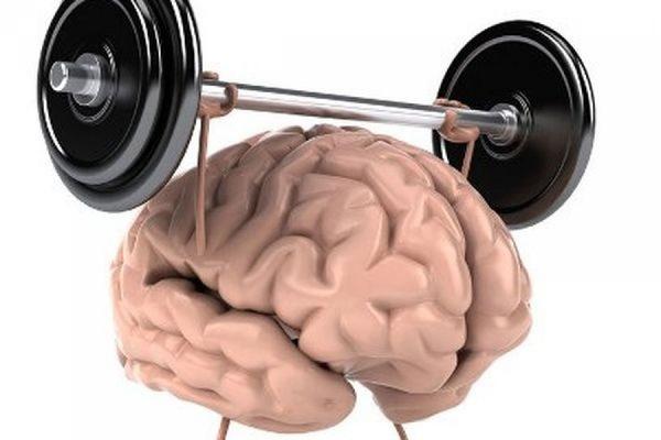 Как «взбодрить» мозг - советы экспертов. 16518.jpeg