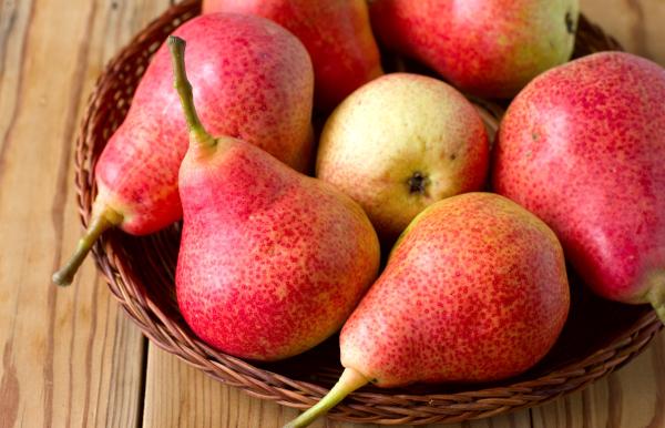 Диетолог назвала три самых полезных продукта начала осени. медицина, здоровье, врач, диетолог, фрукты, овощи, тыква, слива, груша