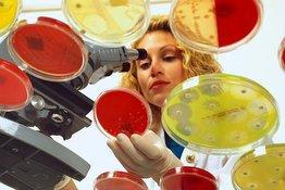 Микробы побеждают антибиотики. И это мировая проблема. 9629.jpeg