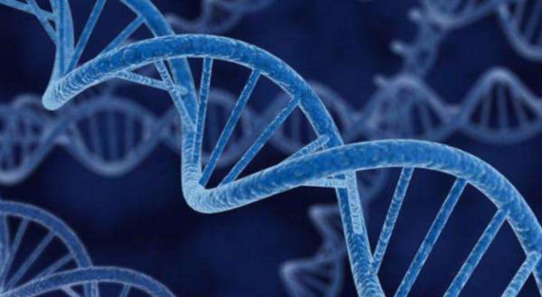 Исследователи выяснили, какие ДНК толкают человека к суициду. 16655.jpeg