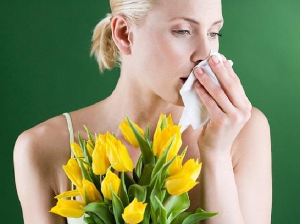 Вы страдаете аллергией на пыльцу? Начинайте готовиться к весне.... Вы страдаете аллергией на пыльцу? Начинайте готовиться к весне..