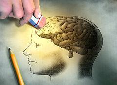Память здоровая и больная, или Можно ли заразиться слабоумием?. 9880.jpeg
