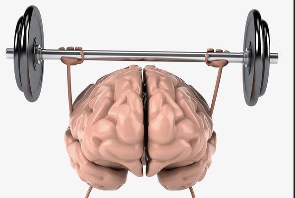 Спорт помогает организму бороться с воспалениями. мозг
