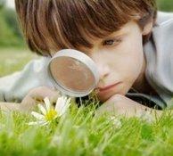 Здоровье мозга: любопытство спасет мир. 9978.jpeg