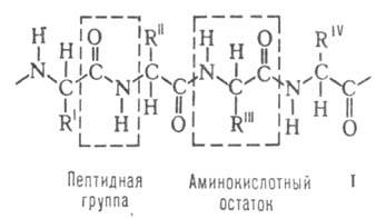 http://www.medpulse.ru/image/encyclopedia/0/2/1/3021.jpeg