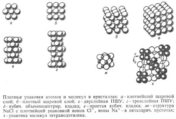 http://www.medpulse.ru/image/encyclopedia/1/5/0/11150.jpeg