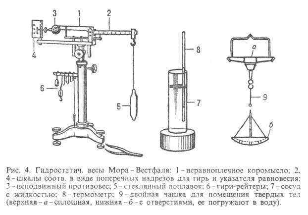 http://www.medpulse.ru/image/encyclopedia/1/5/7/11157.jpeg