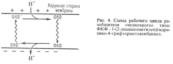 http://www.medpulse.ru/image/encyclopedia/4/7/6/9476.jpeg