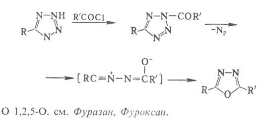 http://www.medpulse.ru/image/encyclopedia/4/9/6/9496.jpeg