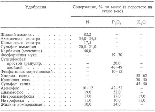 https://www.medpulse.ru/image/encyclopedia/5/7/7/8577.jpeg