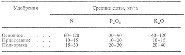 https://www.medpulse.ru/image/encyclopedia/5/7/8/8578.jpeg