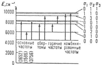 http://www.medpulse.ru/image/encyclopedia/6/2/7/7627.jpeg