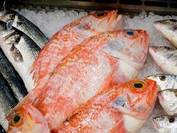 Как обезвредить пойманную рыбу от паразитов