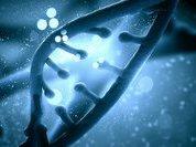 Нашу смерть могут предсказать ДНК, тесты и друзья