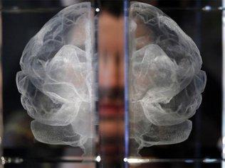 Почему мозг нас подводит?