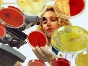 Почему микробы полюбили антибиотики?