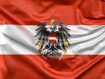 Жителей Австрии просят не обращаться к врачам при симптомах коронавируса