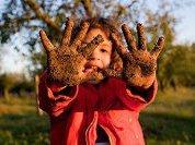 Сколько грязи нам нужно для здоровья?